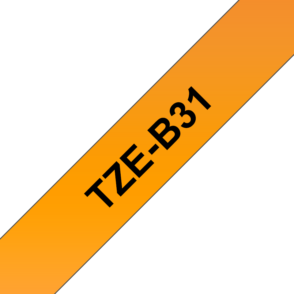 TZe-B31 3